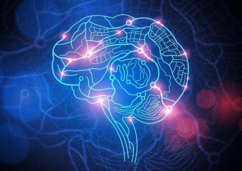 brain18996499_M_0 (1)
